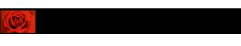 Logo: Blumen Insel (Lieferservice während des Lockdowns)